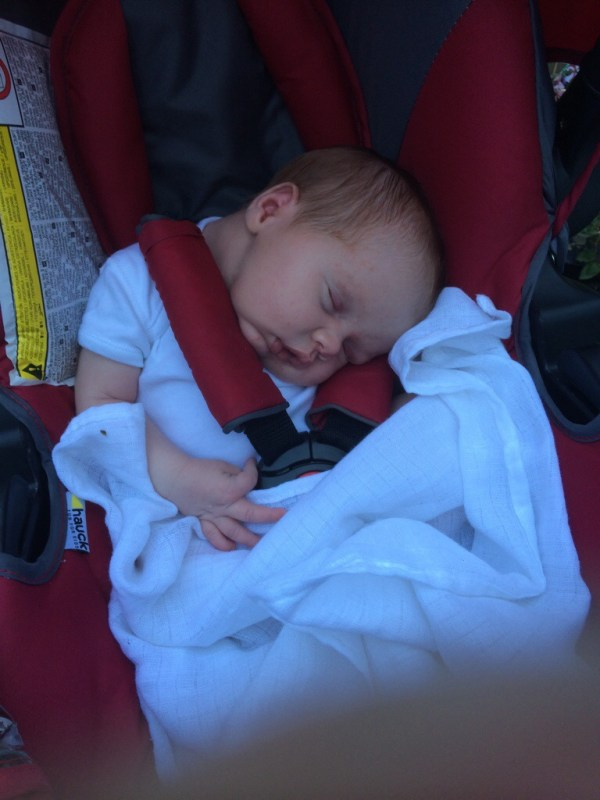 Open Air Napping Part Two