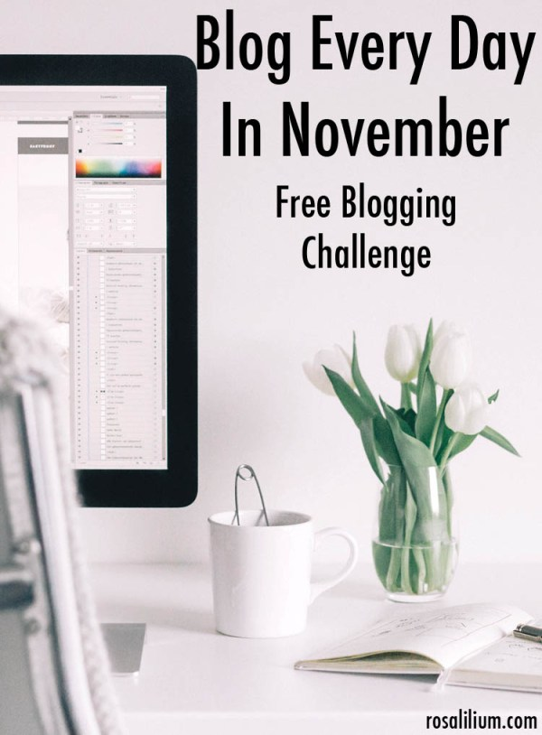Blog Every Day in November