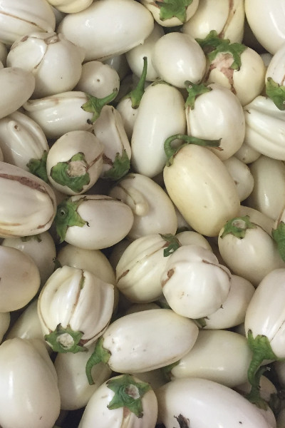 photo:small white eggplants