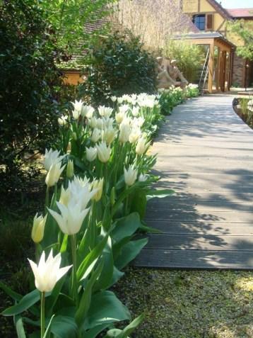 Weiß blühende Tulpen umsäumen den Holzsteg, der über einen Teich zur Terrasse des Badeshauses führt.