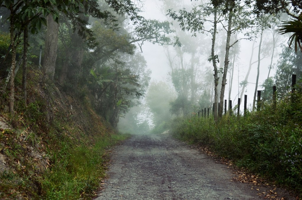 Foggy Pathway | Hansen-Spear Funeral Home - Quincy, Illinois