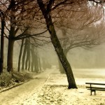 Winter Grief | Hansen-Spear Funeral Home - Quincy, Illinois