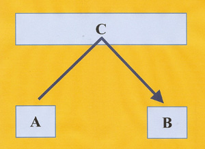 bedrog schema 4