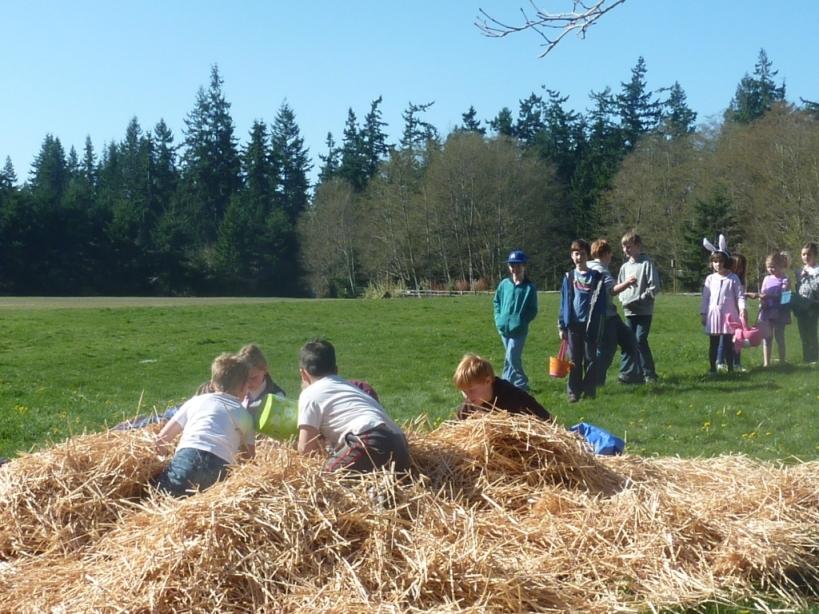easter hunt hay