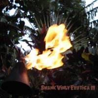Swank Vinyl Exotica II