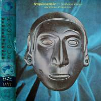 Bibliothèque Exotique: Volume 5 - Tropicosmic (Synthesized Exotica and Electro-Primitivism)