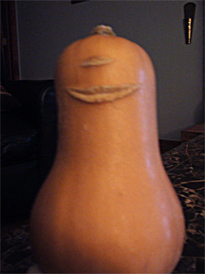 Butternut Cyclops
