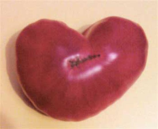 Heart-Warming Tomato