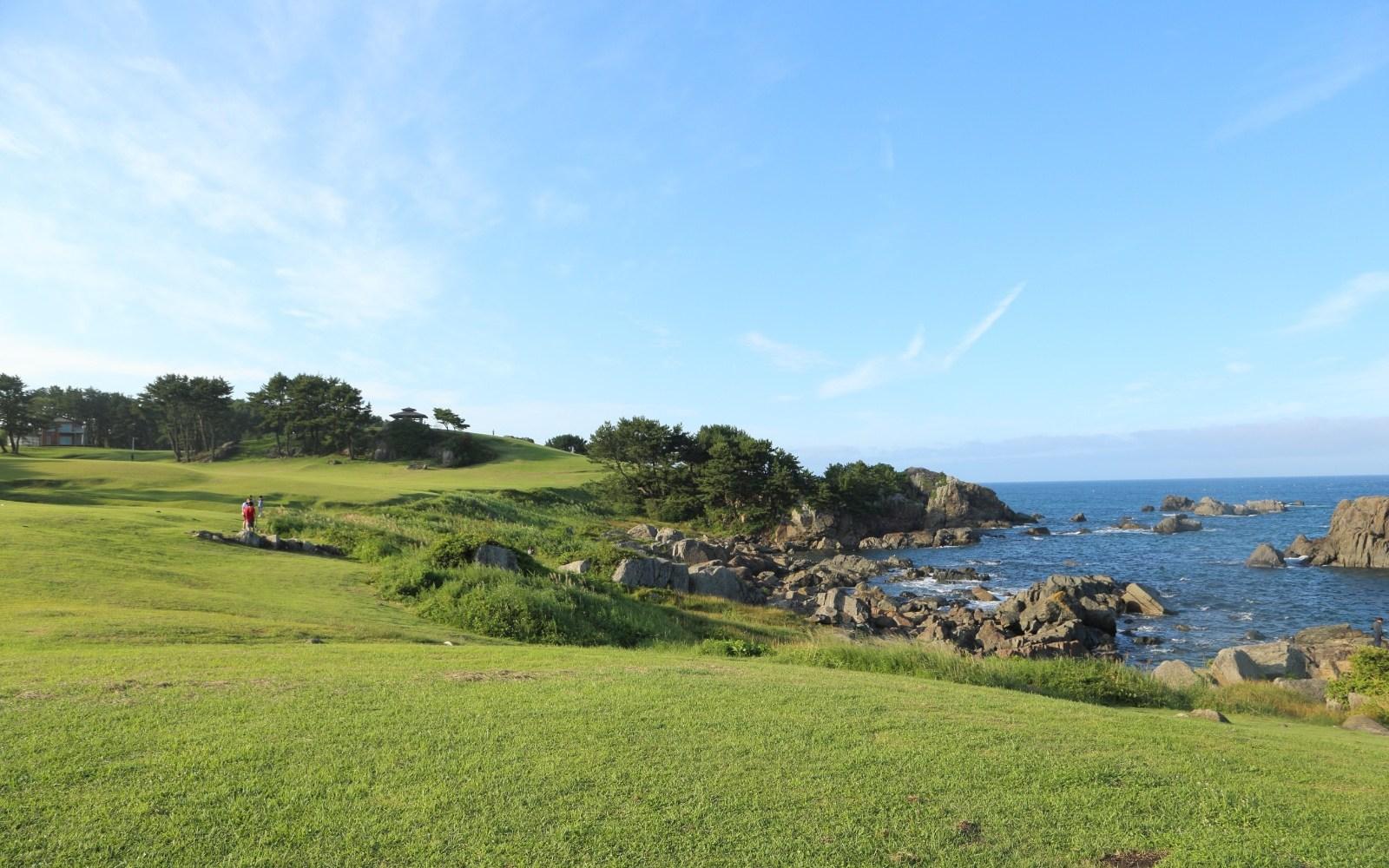 天然の芝生で海を眺めながらおもいおもいの時間を