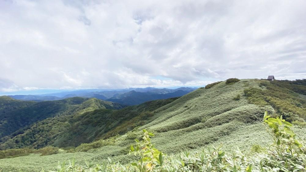 ブナ林で深呼吸!世界遺産・白神山地を体験