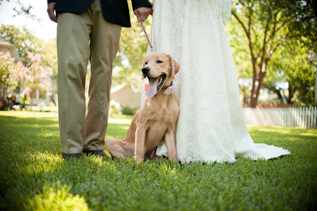 View More: http://ashley-wright.pass.us/hicks-campbell-wedding