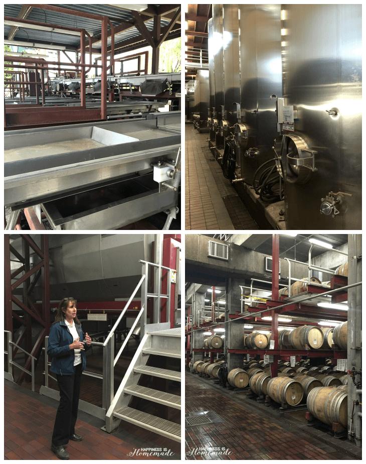 Touring the Sonoma-Cutrer Vineyard