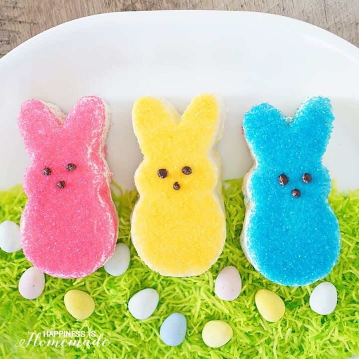 Easy Easter Bunny Cakes