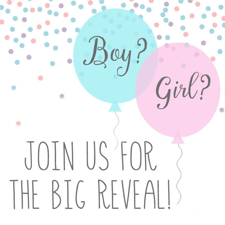 Baby Gender Reveal Party Invitation FI