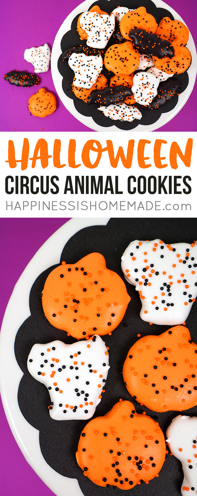 """These yummy Halloween """"Circus Animal"""" Cookies are a delicious Halloween party treat or classroom treat idea! I love these easy-to-make and super cute Halloween cookies - a perfect homemade addition to your """"You've Been Booed"""" basket!"""