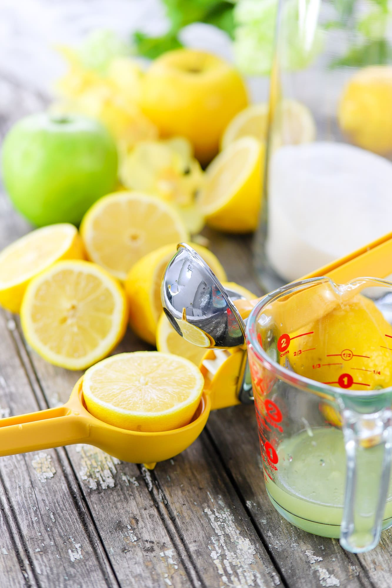 Sliced lemons in and around a citrus juicer