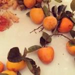Pumpkin Persimmon Pie - Ageless Diet™ for the Holidays