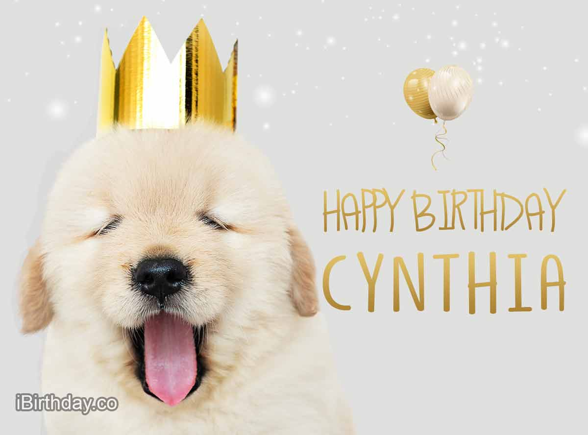 Happy Birthday Cynthia Memes Wishes And Quotes