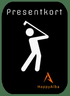 Vilken typ av golfare är du?