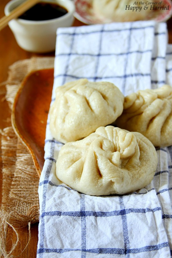 Bao or Baozi {Chinese Steamed Meat Buns}
