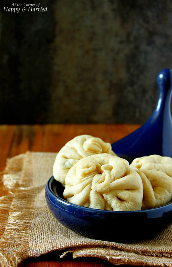 Chinese Steamed Meat Filled Buns