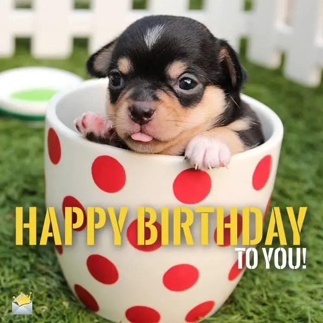 Images Of Cartoon Cute Dog Happy Birthday