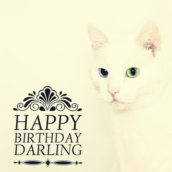 45 Wonderful Birthday Pics For My Darling