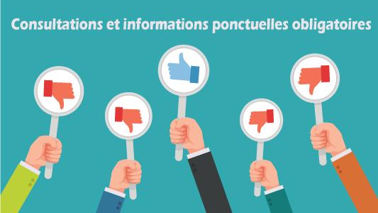 Consultations et informations ponctuelles obligatoires