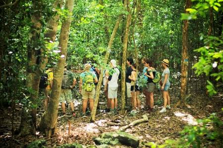 Excursion à Terre-de-Bas aux Saintes - Guadeloupe