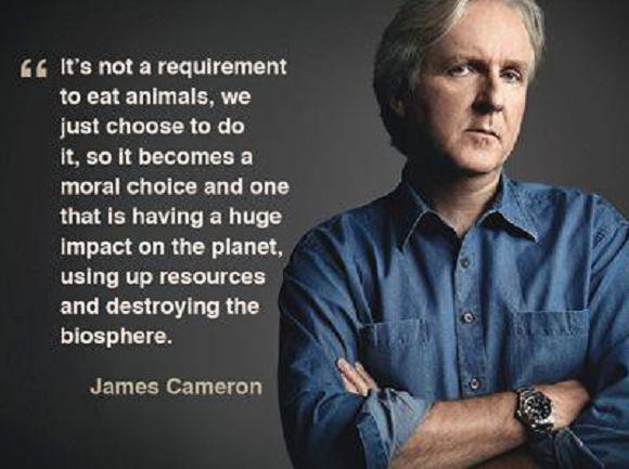 """Résultat de recherche d'images pour """"james cameron vegan"""""""