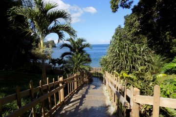 An image of the wooden-fenced steps leading down to Macqueripe Bay, Trinidad.