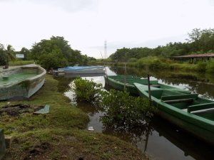 This photo shows the boats before we started our tour of Caroni Swamp