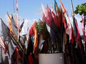 This picture shows colourful prayer flags