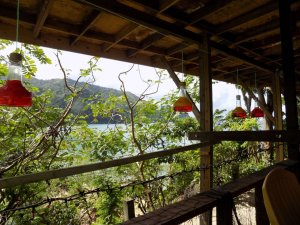 This picture shows four of Mark's home-made hummingbird feeders hanging on our deck