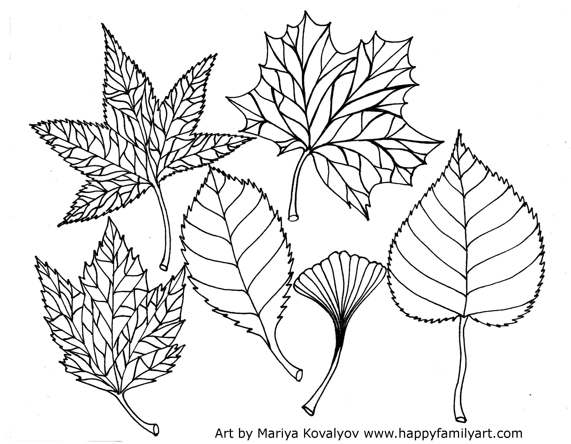 Nj State Leaf