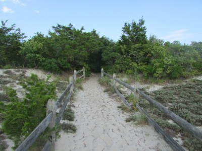 Our Visit To Island Beach State Park