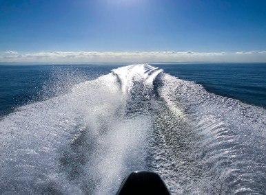 happyfisherman-back-of-the-boat