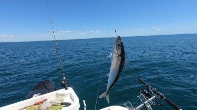 happy-fisherman-fishing-port-phillip-bay