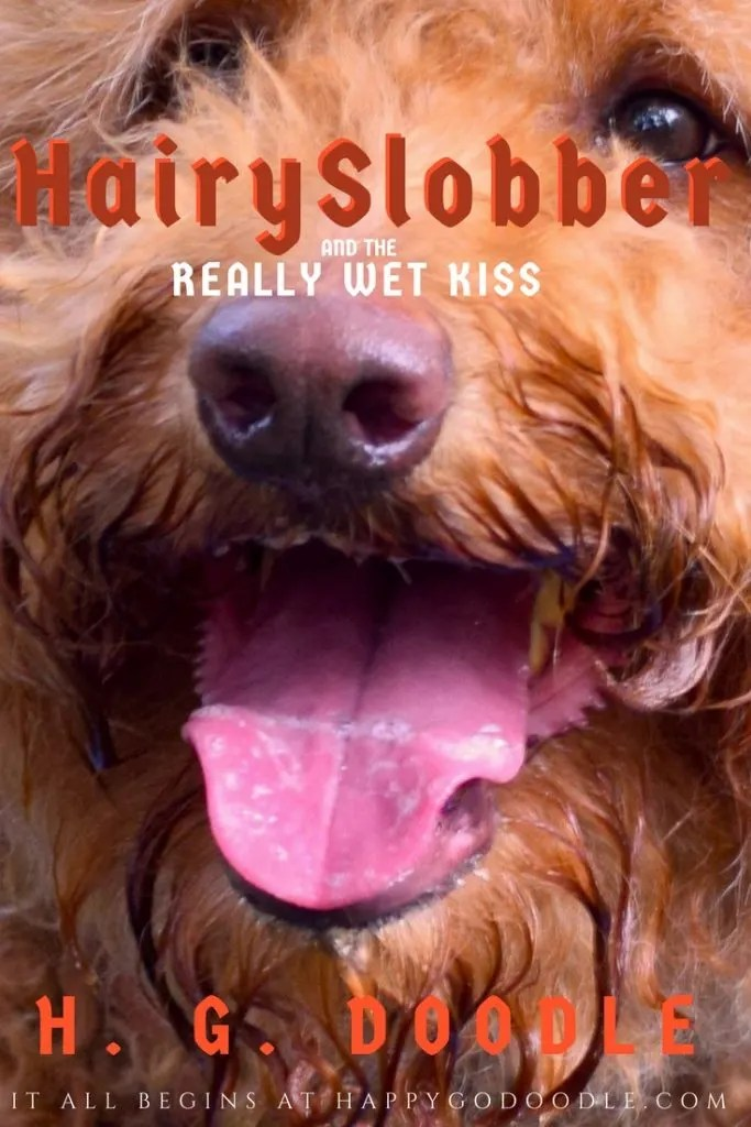 Funny parody of Harry Potter book with goldendoodle dog and title Hairy Slobber and the Really Wet Kiss by H. G. Doodle with photo of goldendoodle dog's face with slobbery tongue