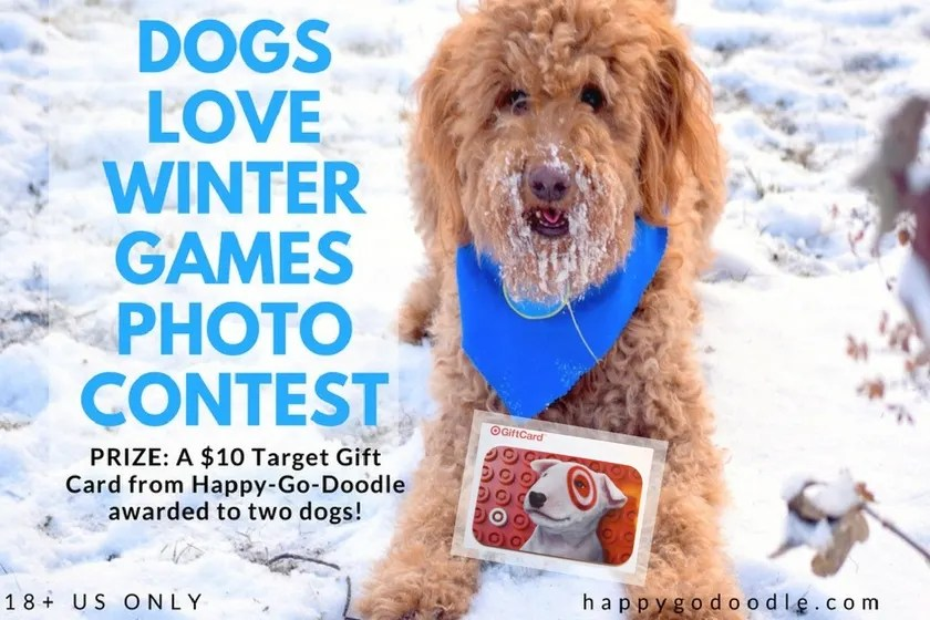 Red goldendoodle dog with blue dog bandana holding a Target gift card and title Dogs Love Winter Games Photo Contest and subtitle Prize: A $10 Target Gift Card from Happy-Go-Doodle awarded to two dogs