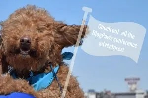 Check out all the BlogPaws conference adventures