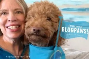 See you soon at BlogPaws 2018 Conference