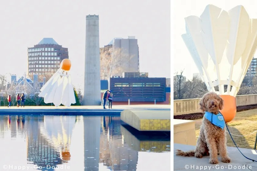Kansas City's Nelson Atkins Museum of Art dog-friendly outdoor sculpture park and red goldendoodle dog in front of shuttlecock sculpture