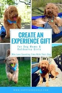 Four Images Of Red Goldendoodle Dog Outdoors And Title Create An Experience Gift For Moms