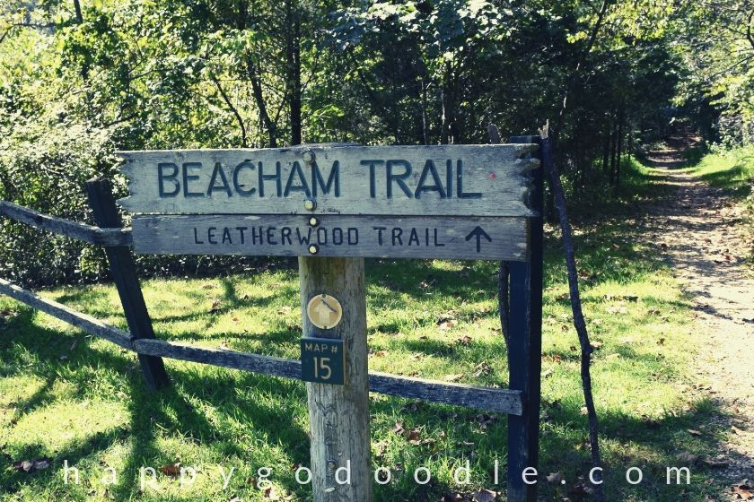photo of a wooden sign that says beacham trail