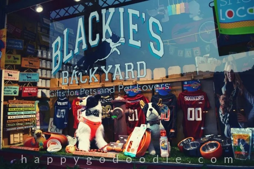 photo of blackie's backyard gift store in eureka springs