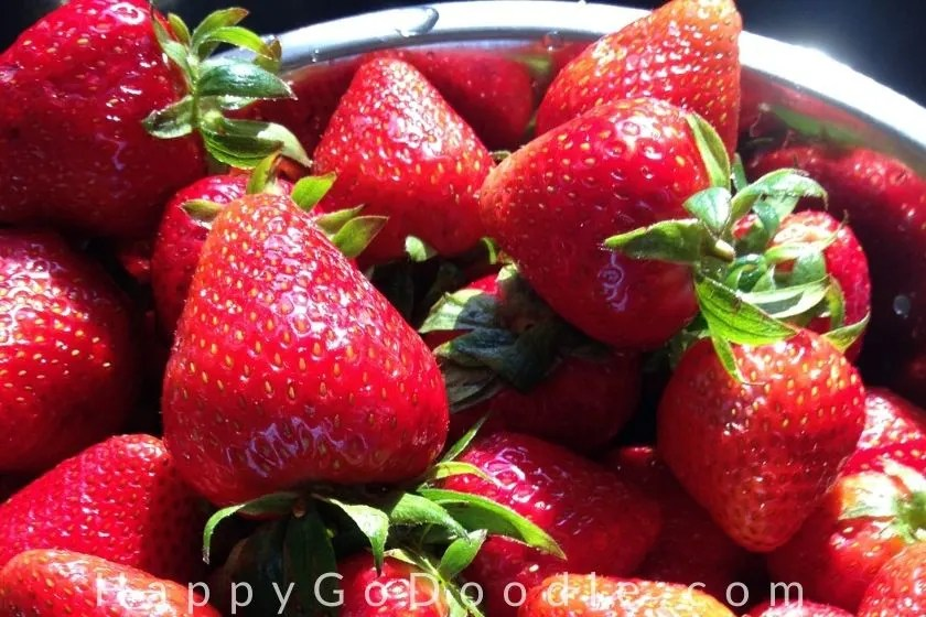 red strawberries as example of something that makes me happy, photo.