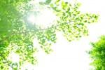 日焼け対策 春の紫外線