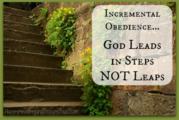 Incremental Obedience … God Leads in Steps NOT Leaps