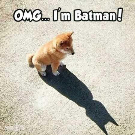 OMG...I'm Batman!